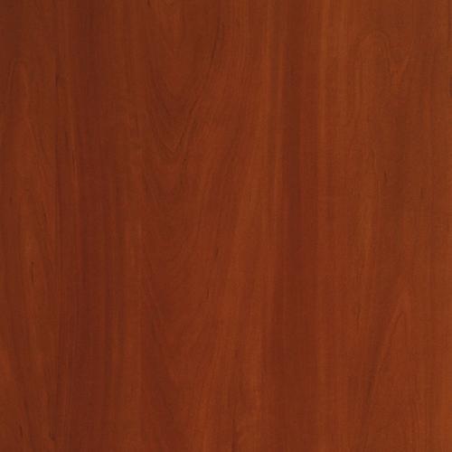 Яблоня локарно темная 1972PR